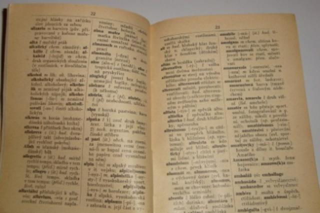slovník cizích slov kniha